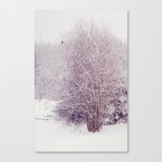 winter's snow Canvas Print