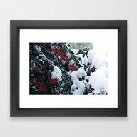Winter And Snow Framed Art Print
