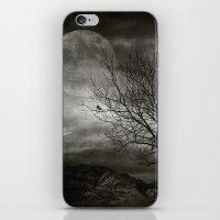 February Tree iPhone & iPod Skin