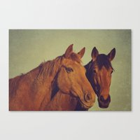 Here We Go Two By Two Canvas Print