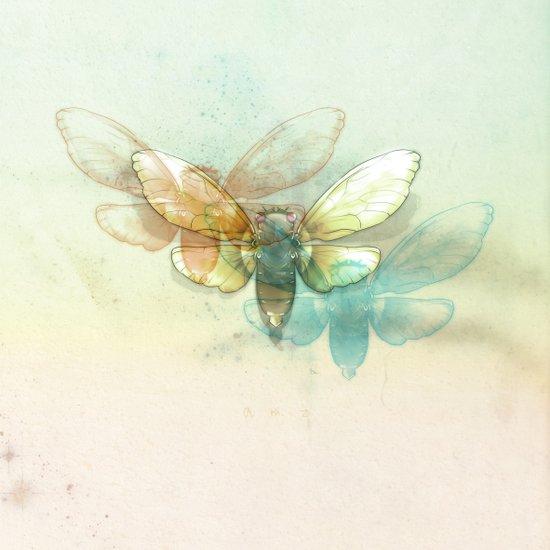 Mr.Summertime (Cicada Skins) Canvas Print