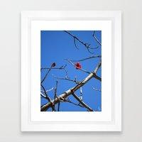 Lonely Blossom I Framed Art Print