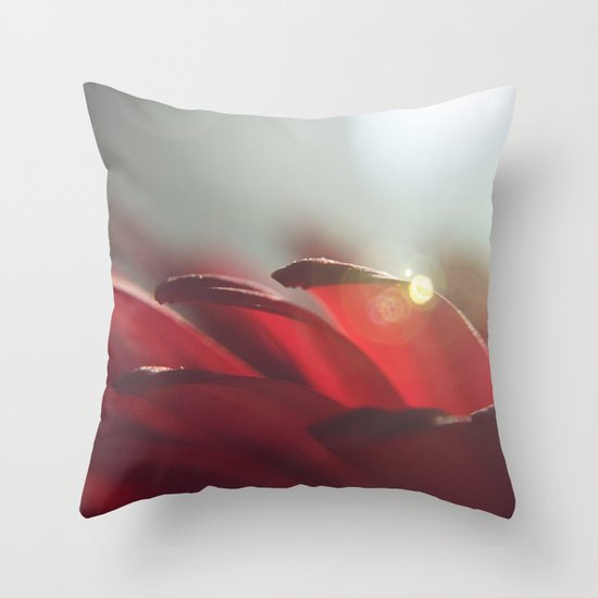 Drops of Light Throw Pillow