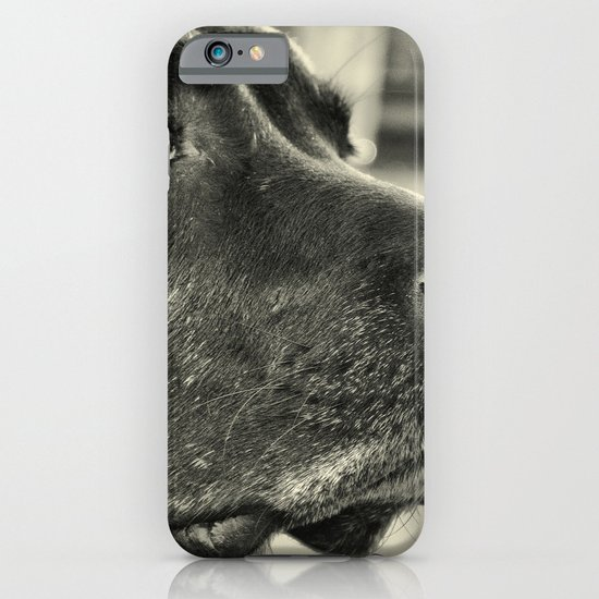 Really? iPhone & iPod Case
