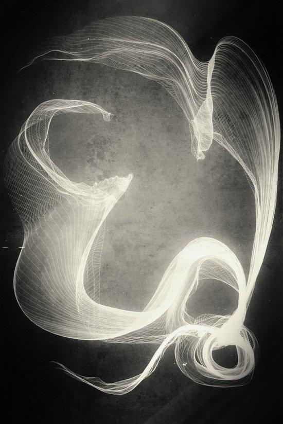 suc·cu·bus /ˈsəkyəbəs/ Art Print