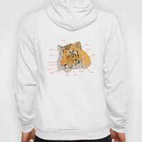 Tiger Colors Hoody