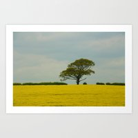 Lone Tree And Gold Art Print
