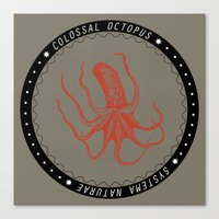 Colossal Squid Canvas Print