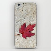 Red Leaf On Concrete iPhone & iPod Skin