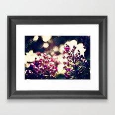 In the Garden 3 Framed Art Print