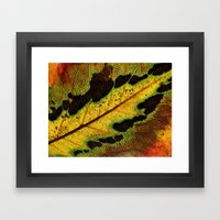 Leaf Veins III Framed Art Print