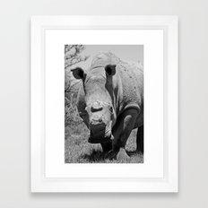 Hornless Framed Art Print