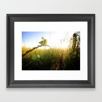 Shrub Framed Art Print