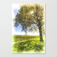 The Daffodil Summer Farm Art Canvas Print
