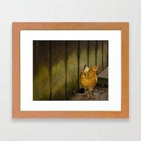 Orange chicken Framed Art Print