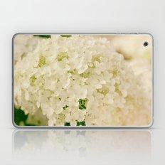 Vintage Nature Botanical White Hydrangea Flower Head Laptop & iPad Skin
