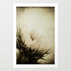 une fleur  Art Print