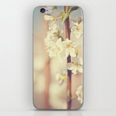 He brought me spring iPhone & iPod Skin