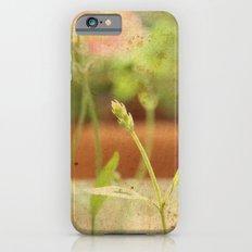 Anarchy in Planter iPhone 6 Slim Case