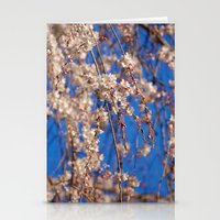 Cherry Blossoms 4 Stationery Cards