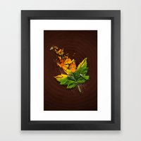 Monarchs Framed Art Print