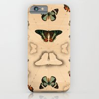 iPhone & iPod Case featuring Butterfly Coordinates by petite stitches