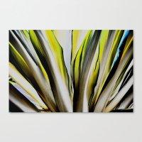 Under Flora #4 Canvas Print