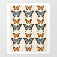 Butterfly Pattern 1 Art Print
