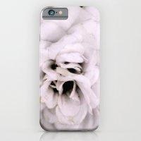 iPhone & iPod Case featuring Single Flower by SophiaRoe