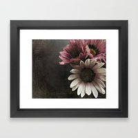 gazania flowers Framed Art Print