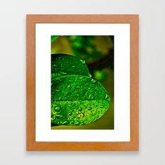 Greener Framed Art Print