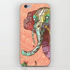 Elephant Ini iPhone & iPod Skin