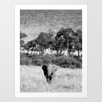Elephant in Maasai Mara Art Print