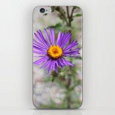 Purple Wild Flower iPhone & iPod Skin