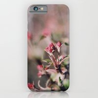 iPhone & iPod Case featuring bloom by erinreidphoto