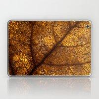 illuminated leaf Laptop & iPad Skin