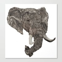 Street Elephant Canvas Print