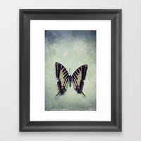 Vintage Butterfly 5 Framed Art Print