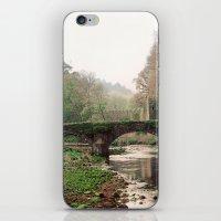 QUIET SPRING iPhone & iPod Skin