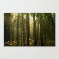 Forest#5 Canvas Print