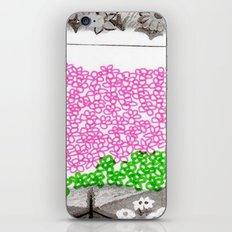 Field day iPhone & iPod Skin