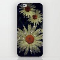 Light Up Daisies iPhone & iPod Skin