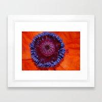 Poppy Burst Framed Art Print
