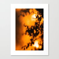 Simple Shadows Canvas Print