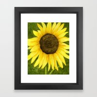 Sunshine On A Stick Framed Art Print