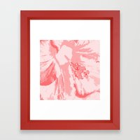 Intimate Pink  Framed Art Print
