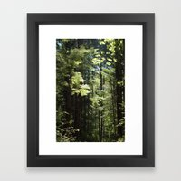 Olympia Framed Art Print