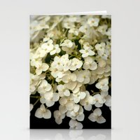 Tiny White Hydrangeas (I… Stationery Cards