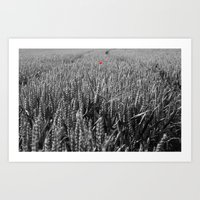 Summer Fields #6 Art Print