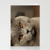 Diesel, the cat - (close up)  Stationery Cards